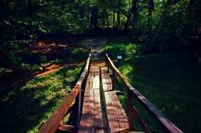 Photo by Georgiana Mirela on Pexels.com